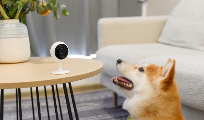 Đi mua camera an ninh, cần hỏi gì để khỏi lo về rủi ro bảo mật? - 4